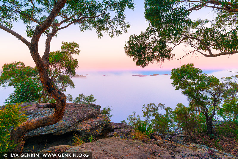 landscapes stock photography | Heavy Fog Over Hawkesbury River in the Morning, Marlow, Popran National Park, Central Coast, NSW, Australia, Image ID AU-HAWKESBURY-MARLOW-0002