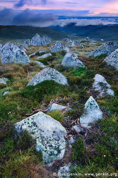 landscapes stock photography | Sunrise in the Snowy Mountains, Kosciusko National Park, Snowy Mountains, NSW, Australia, Image ID AU-KOSCIUSKO-0004