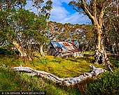 landscapes stock photography | Wallace's Hut on a Sunny Day, Falls Creek, Victoria, Australia, Image ID AU-FALLS-CREEK-WALLACES-HUT-0003. Wallace's Hut is the oldest of the Cattleman's huts still standing in the Alpine National Park and is classified under the National Trust. It was built from slabs of snowgum by the Wallace Brothers in 1889 and is located along the Bogong High Plains Road, 7.7 kms from the Rocky Valley storage dam wall. In the 1930's its woolly butt roof shingles were replaced by the SEC when it was taken over as a workers' hut. Wallace Hut is today the perfect spot for a picnic amongst the snowgums and is used today as an emergency shelter for hikers.