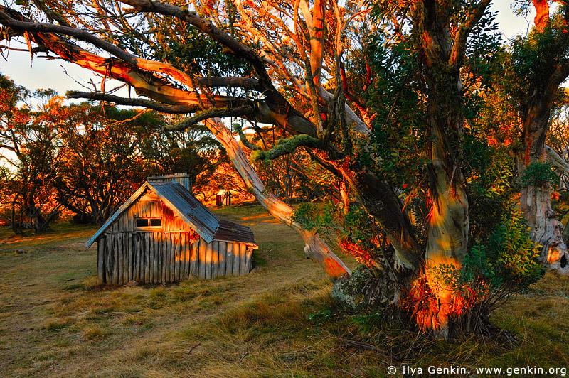 landscapes stock photography   Wallace's Hut at Sunrise, Falls Creek, Victoria, Australia, Image ID AU-FALLS-CREEK-WALLACES-HUT-0002