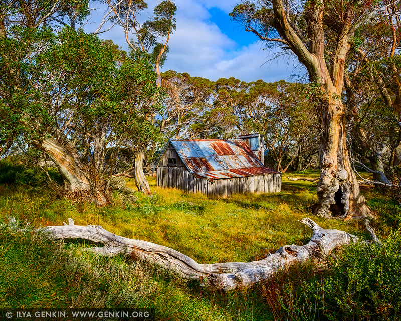 landscapes stock photography | Wallace's Hut on a Sunny Day, Falls Creek, Victoria, Australia, Image ID AU-FALLS-CREEK-WALLACES-HUT-0003