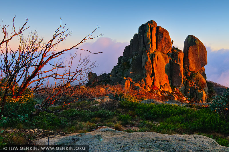 landscapes stock photography | The Cathedral Rock at Sunrise, Mount Buffalo National Park, Australian Alps, VIC, Australia, Image ID AU-MOUNT-BUFFALO-0003