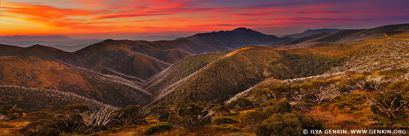 landscapes stock photography | Mt Buffalo, The Razorback and Mt Feathertop, Mount Hotham, Alpine National Park, Victoria, Australia, Image ID AU-MOUNT-HOTHAM-0001