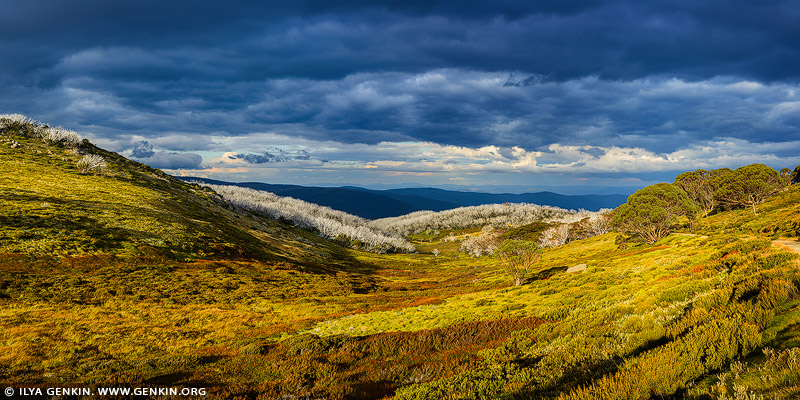 landscapes stock photography | Alpine National Park at Dramatic Sunset, Falls Creek, Victoria, Australia, Image ID AU-VIC-FALLS-CREEK-0003