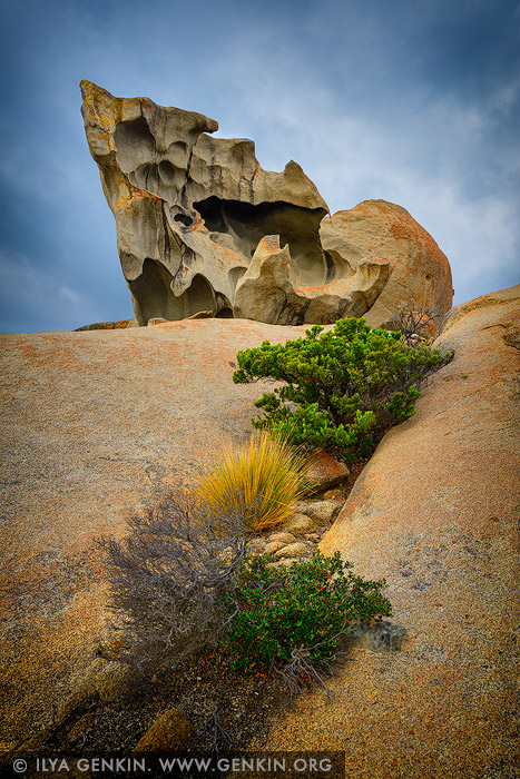 landscapes stock photography | The Remarkable Rocks, Flinders Chase National Park, Kangaroo Island, SA, Australia
