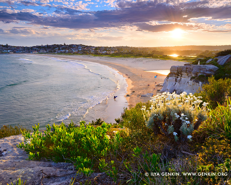 landscapes stock photography | Sunset at North Curl Curl Beach, Sydney, NSW, Australia, Image ID AU-CURL-CURL-0006
