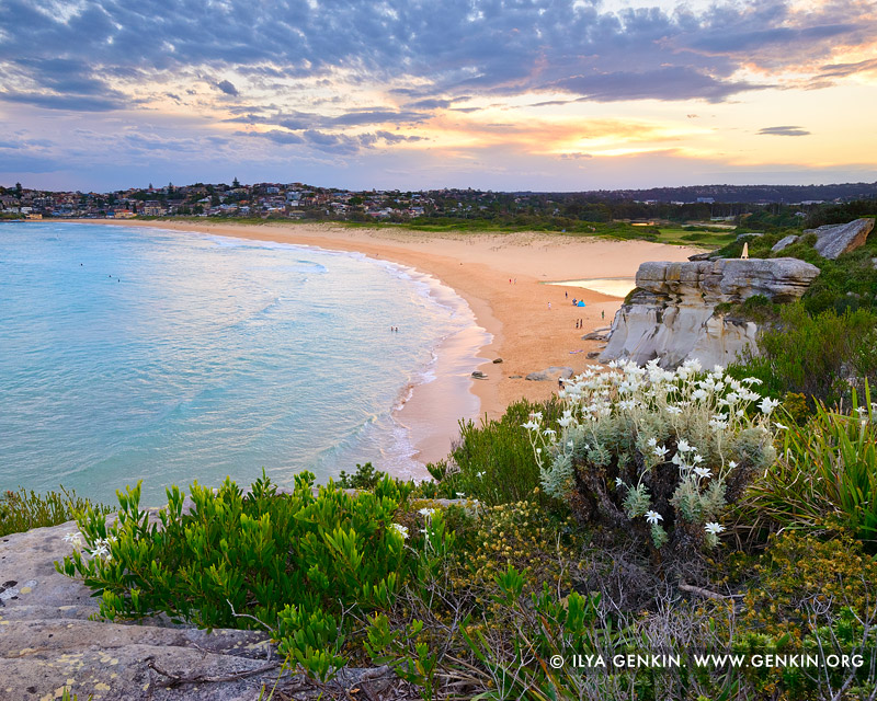 landscapes stock photography | Sunset at North Curl Curl Beach, Sydney, NSW, Australia, Image ID AU-CURL-CURL-0008