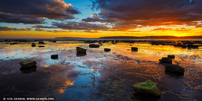 landscapes stock photography | Sunset at Long Reef Point, Sydney, NSW, Australia, Image ID AU-LONG-REEF-POINT-0003