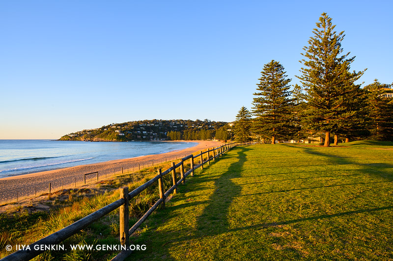 landscapes stock photography | Early Morning at Palm Beach, Palm Beach, Sydney, NSW, Australia, Image ID PALM-BEACH-BARRENJOEY-0005