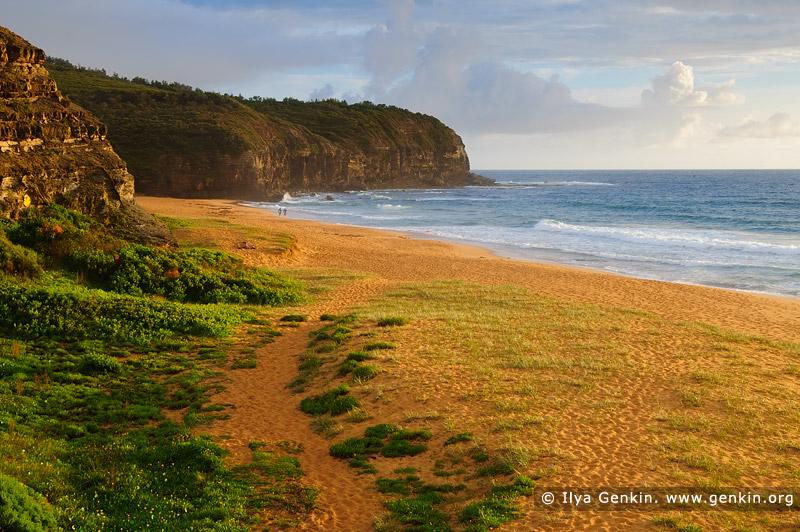 landscapes stock photography | Calm morning at Turimetta Beach, Turimetta Beach, Sydney, NSW, Australia, Image ID TURIMETTA-BEACH-0015