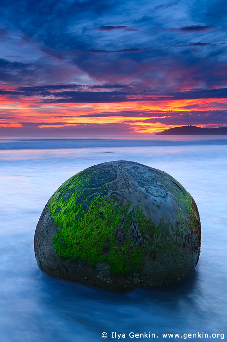 landscapes stock photography | Sunrise at Moeraki Boulders, Otago, South Island, New Zealand, Image ID NZ-MOERAKI-BOULDERS-0005