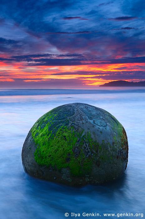 landscapes stock photography | Sunrise at Moeraki Boulders, Otago, South Island, New Zealand, Image ID NZ-MOERAKI-BOULDERS-0005