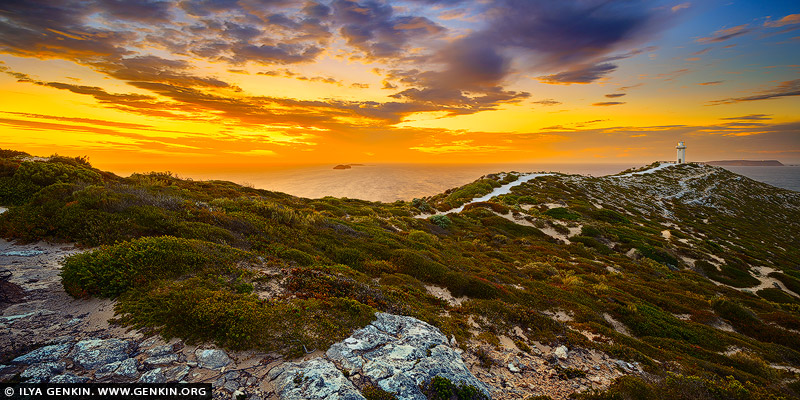 landscapes stock photography | Sunrise at Cape Spencer, Yorke Peninsula, South Australia (SA), Australia, Image ID AU-CAPE-SPENCER-0002