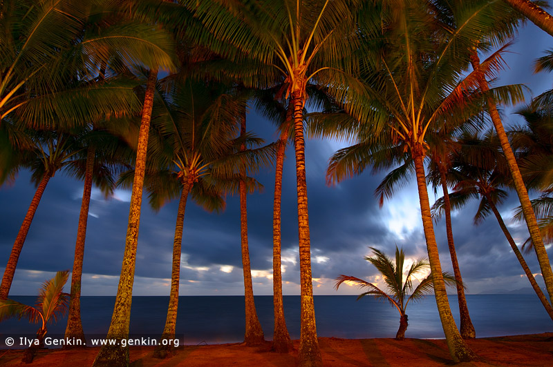 landscapes stock photography | Early Morning Light at Palm Cove, Cairns, Queensland (QLD), Australia, Image ID PALM-COVE-QLD-AU-0001