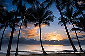 landscapes stock photography | Sunrise at Palm Cove, Cairns, Queensland (QLD), Australia, Image ID PALM-COVE-QLD-AU-0003. Stock image of sunrise at Palm Cove, Cairns, Queensland, Australia with silhouettes of coconut palms at beachfront.