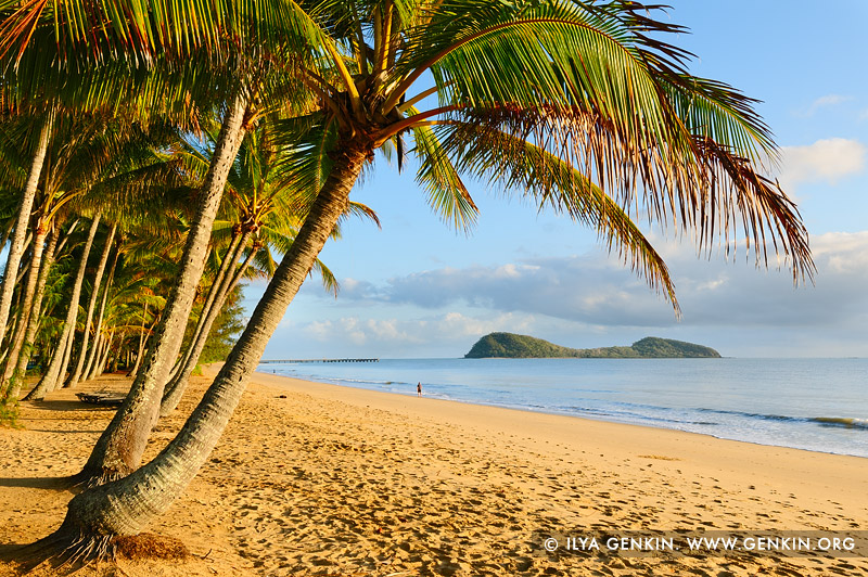 landscapes stock photography | Palm Cove at Early Morning, Cairns, Queensland (QLD), Australia, Image ID PALM-COVE-QLD-AU-0005
