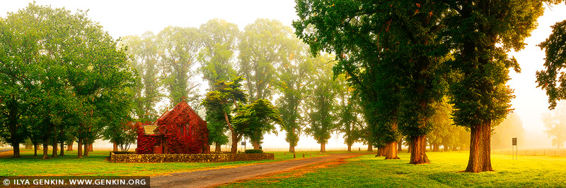 landscapes stock photography | Foggy Autumn Morning at Gostwyck Chapel, Northern Tablelands, New England, NSW, Australia, Image ID AU-GOSTWYCK-AUTUMN-0002