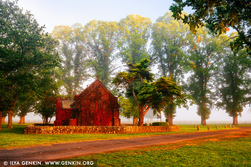 landscapes stock photography | Gostwyck Chapel in Fog, Northern Tablelands, New England, NSW, Australia, Image ID AU-GOSTWYCK-AUTUMN-0003