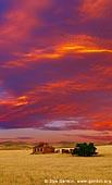 landscapes stock photography | Abandoned Farmhouse at Sunset, Burra, South Australia (SA), Australia, Image ID AU-BURRA-ABANDONED-FARMHOUSE-0005.