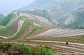 landscapes stock photography | Longji Rice Terrace Fields, Longsheng, Guangxi, China, Image ID CHINA-LONGSHENG-0010. Stock photo of a farmer working on Longji rice terraces in the mountains near Zhuang village of Ping An, Longsheng, Guangxi, China.