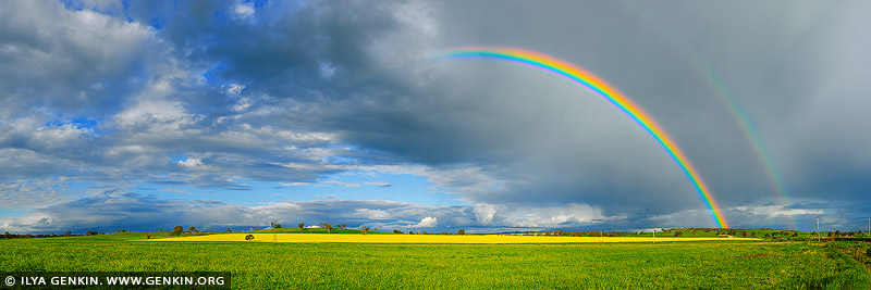 landscapes stock photography | Double Rainbow over a Field of Canola, Wellington, Central NSW, Australia, Image ID AU-CANOLA-FIELDS-0002