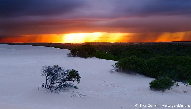 landscapes stock photography | Sunset at Dark Point, Myall Lake National Park, NSW, Australia, Image ID DARK-POINT-DUNES-0003