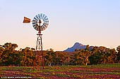 landscapes stock photography | Merna Mora Windmill at Sunset, Flinders Ranges, SA, Australia, Image ID AU-SA-FLINDERS-0010. This image of the windmill and northern part of the Elder Range st sunset was taken on the Moralana Scenic Drive near Merna Mora Station in Flinders Ranges, SA, Australia. Moralana Scenic drive is one of the best drives through the Flinders Ranges. The Flinders Ranges offer some truly remarkable scenery, and the ever changing seasons, colours, light and shadows, provide more than enough material for any artist.