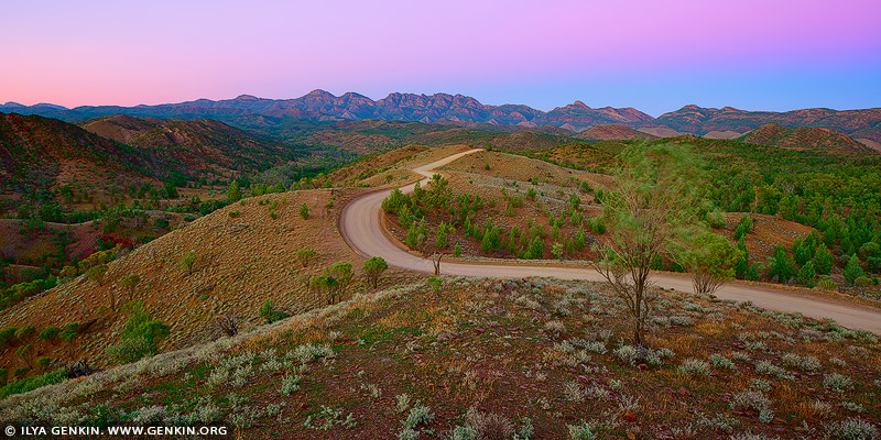 landscapes stock photography | Bunyeroo Valley from Razorback Lookout at Dawn, Flinders Ranges, SA, Australia, Image ID AU-SA-FLINDERS-0016