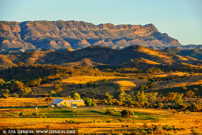 landscapes stock photography | Arkaba Station at Sunrise, Flinders Ranges, SA, Australia, Image ID AU-SA-FLINDERS-0021