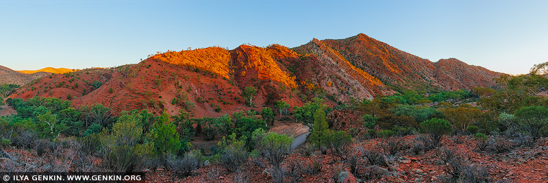 landscapes stock photography | Walls of Brachina Gorge, Ikara-Flinders Ranges National Park, SA, Australia, Image ID AU-SA-FLINDERS-0024