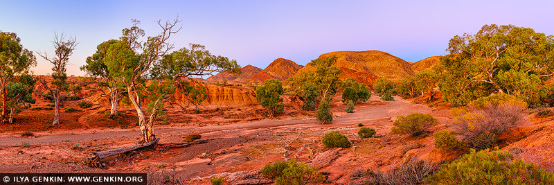 landscapes stock photography | Wilkawillina Gorge at Dusk, Ikara-Flinders Ranges National Park, SA, Australia, Image ID AU-SA-FLINDERS-0026