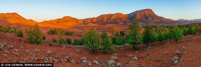 landscapes stock photography | Sunrise at Brachina Gorge, Ikara-Flinders Ranges National Park, SA, Australia, Image ID AU-SA-FLINDERS-0027