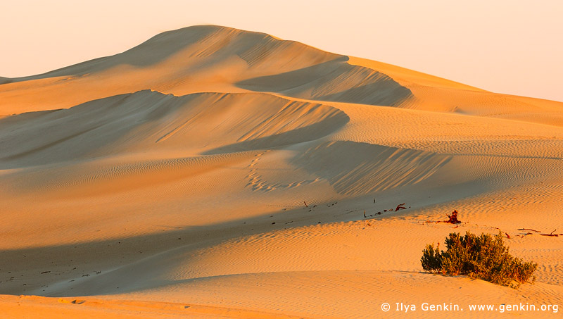 landscapes stock photography | Gunyah Beach Sand Dunes at Sunset, Coffin Bay National Park, South Australia (SA), Australia, Image ID GUNYAH-DUNES-COFFIN-BAY-0001