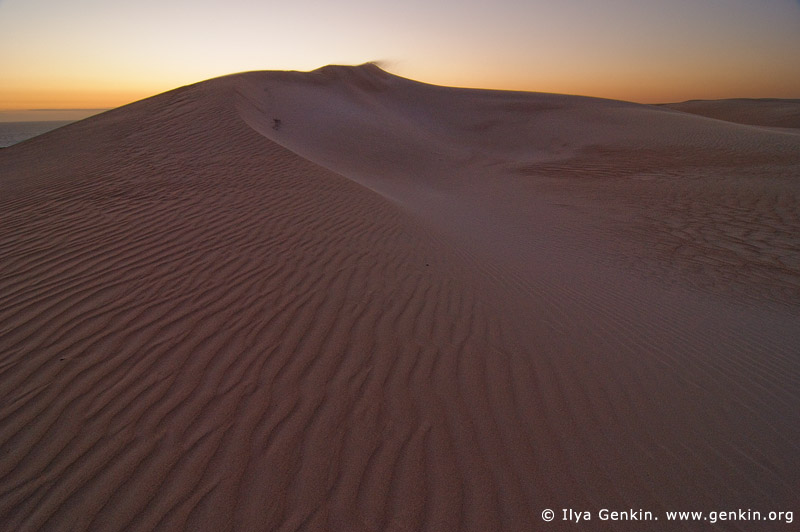 landscapes stock photography | Gunyah Beach Sand Dunes at Twilight, Coffin Bay National Park, South Australia (SA), Australia, Image ID GUNYAH-DUNES-COFFIN-BAY-0003