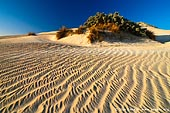 landscapes stock photography | Patterns on Sand Dunes, Gunyah Beach, Coffin Bay National Park, South Australia (SA), Australia, Image ID GUNYAH-DUNES-COFFIN-BAY-0004. A classic nature picture, Gunyah Beach Sand Dunes in the Coffin Bay National Park, South Australia. Sand dunes on the Gunyah Beach are one of the highlights on a trip to the Coffin Bay National Park. These Coastal sand dunes are constantly moving by the power of the wind.