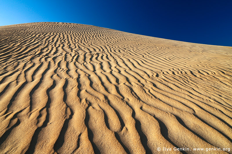 landscapes stock photography | Sand Ripples on Dunes, Gunyah Beach, Coffin Bay National Park, South Australia (SA), Australia, Image ID GUNYAH-DUNES-COFFIN-BAY-0006