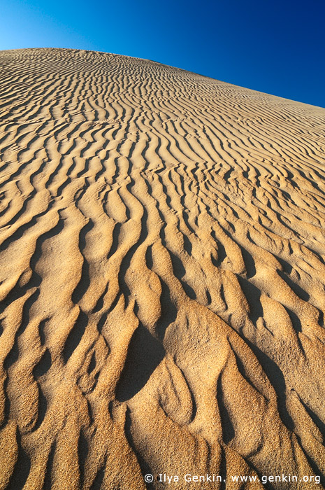landscapes stock photography | Sand Ripples on Dunes, Gunyah Beach, Coffin Bay National Park, South Australia (SA), Australia, Image ID GUNYAH-DUNES-COFFIN-BAY-0008