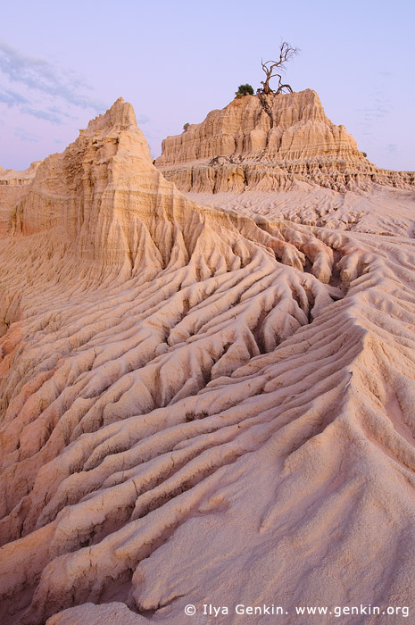 landscapes stock photography | Dusk at The Walls of China, Mungo National Park, NSW, Australia, Image ID AU-MUNGO-0013