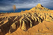 landscapes stock photography | The Walls of China at Sunset, Mungo National Park, NSW, Australia, Image ID AU-MUNGO-0025. The golden sand dunes of the Walls of China in the desert of Mungo National Park Death in NSW, Australia.