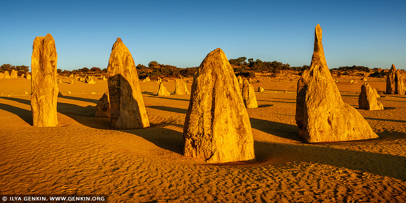 The Pinnacles Desert at Sunset, Nambung National Park, Western Australia, Australia