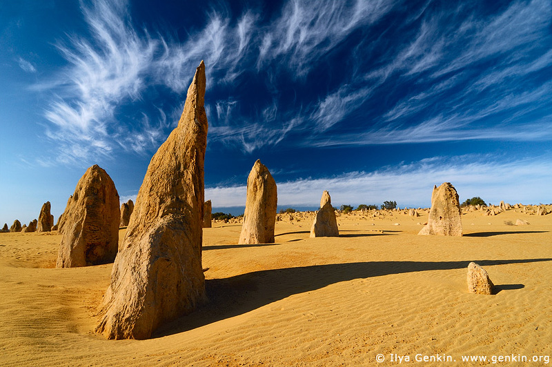 The Pinnacles Desert, Nambung National Park, Western Australia, Australia