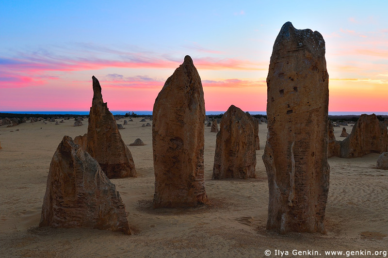 landscapes stock photography | The Pinnacles, Nambung National Park, WA, Australia, Image ID AU-WA-PINNACLES-0005