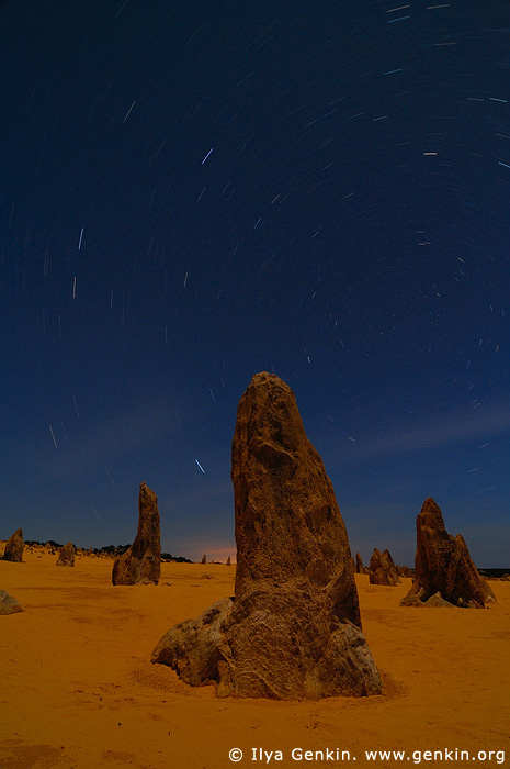 landscapes stock photography | The Pinnacles and Star Trails, Nambung National Park, WA, Australia, Image ID AU-WA-PINNACLES-0006