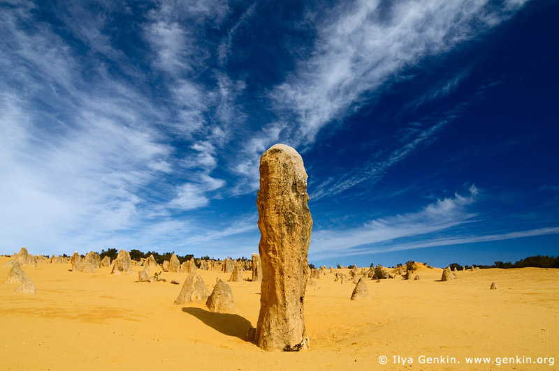 landscapes stock photography | The Pinnacles at Nambung National Park, Western Australia (WA), Australia, Image ID AU-WA-PINNACLES-0018