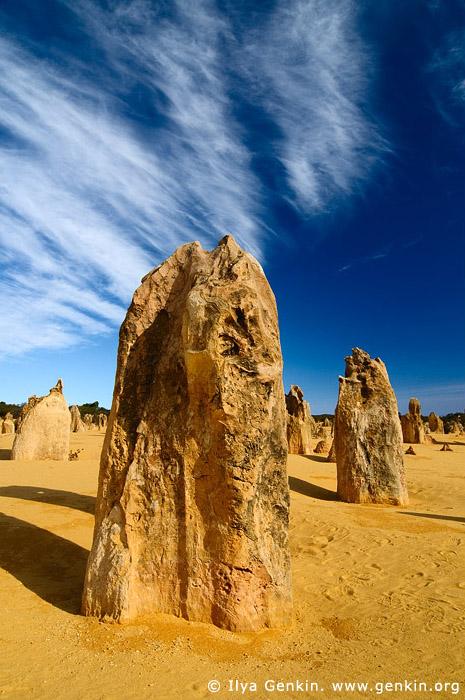 landscapes stock photography | The Pinnacles at Nambung National Park, Western Australia (WA), Australia, Image ID AU-WA-PINNACLES-0019
