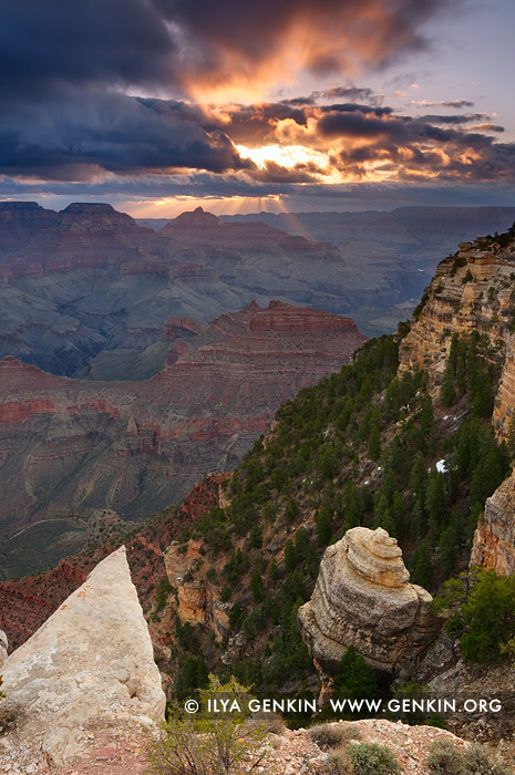 landscapes stock photography | Vishnu Temple from Yaki Point at Sunrise, South Rim, Grand Canyon, Arizona, USA
