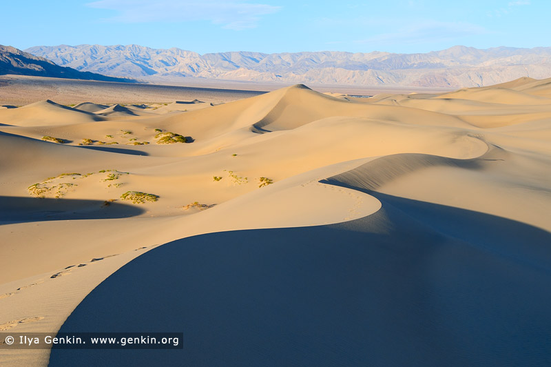 landscapes stock photography | Mesquite Flat Sand Dunes, Death Valley, California, USA, Image ID US-DEATH-VALLEY-0008