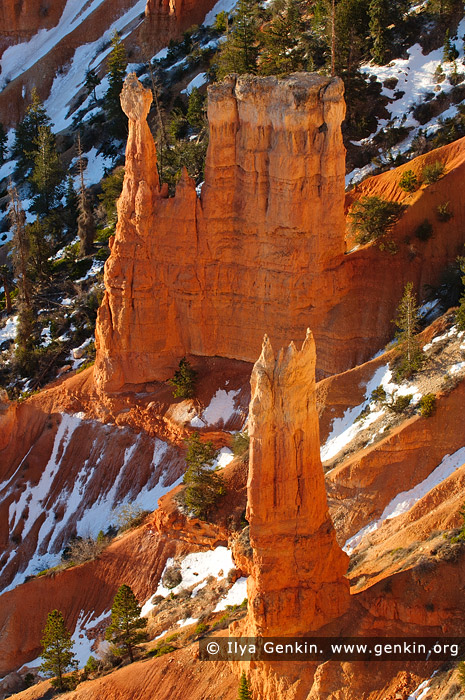 landscapes stock photography | Bryce Canyon Hoodoos at Sunrise, Inspiration Point, Bryce Canyon National Park, Utah, USA, Image ID US-BRYCE-CANYON-0009