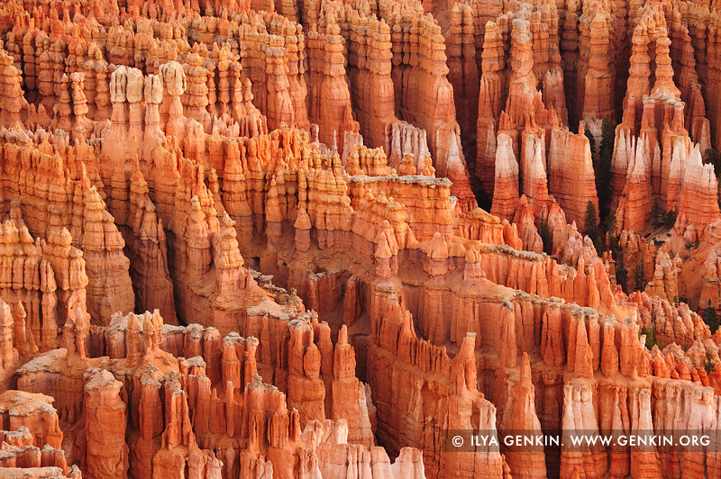 landscapes stock photography | Hoodoos Formations of the Bryce Canyon, Inspiration Point, Bryce Canyon National Park, Utah, USA, Image ID US-BRYCE-CANYON-0011