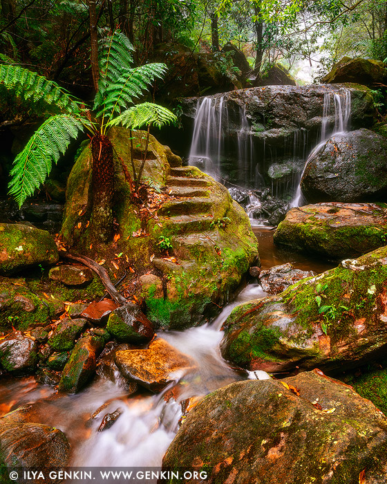 landscapes stock photography | Weeping Rock, Leura, Blue Mountains National Park, New South Wales (NSW), Australia. Weeping Rock in Leura, Blue Mountains National Park is a small and picturesque 3m drop waterfall, located at the base of Leura's Bridal Veil Falls.#source%3Dgooglier%2Ecom#https%3A%2F%2Fgooglier%2Ecom%2Fpage%2F%2F10000